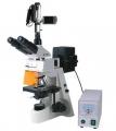 BM-19AYV摄像荧光显微镜