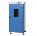 立式电热恒温鼓风干燥箱DGG-9920A