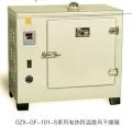 鼓风干燥箱GZX-GF101-2-BS