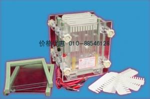 DYCZ-28C双板夹芯式垂直电泳仪(槽)(小号)