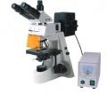 BM-19AY荧光显微镜