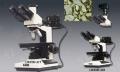 正置金相显微镜LW200-3JB