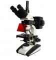 BM-20AY落射荧光显微镜