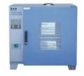 电热恒温干燥箱GZX-DH.202-O-BS
