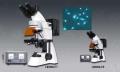 荧光显微镜-四色LW300LFT