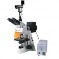 BM-19AYS数码荧光显微镜