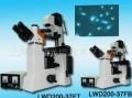 倒置荧光生物显微镜-四色LWD200-37FT