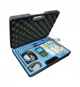 便携式pH/氟离子/电导率仪WS200上
